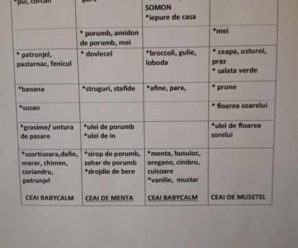 Organizarea mesei sau Menu planning